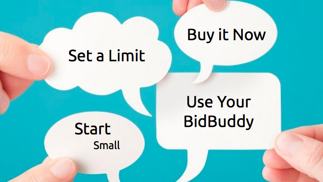6 Tips Of Advice For Beginning Bidders
