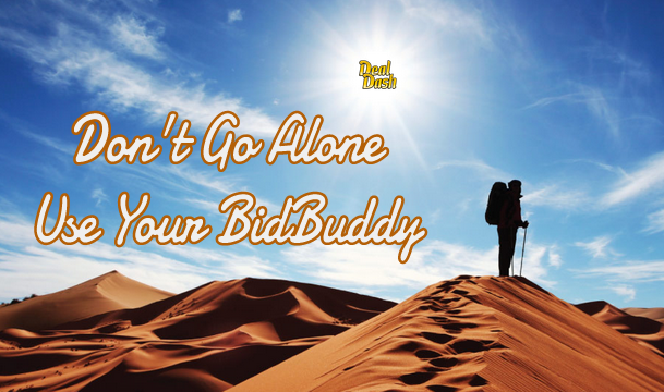 Lean On A Buddy… BidBuddy