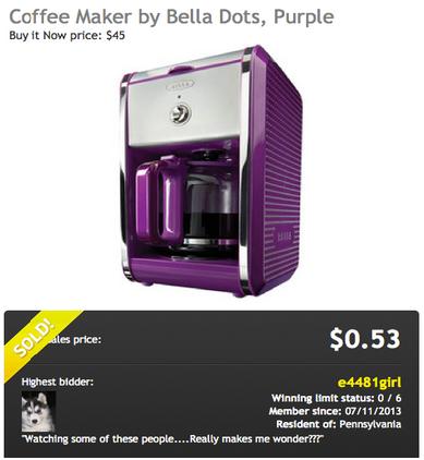 Bella Dots Coffee Maker Won on DealDash