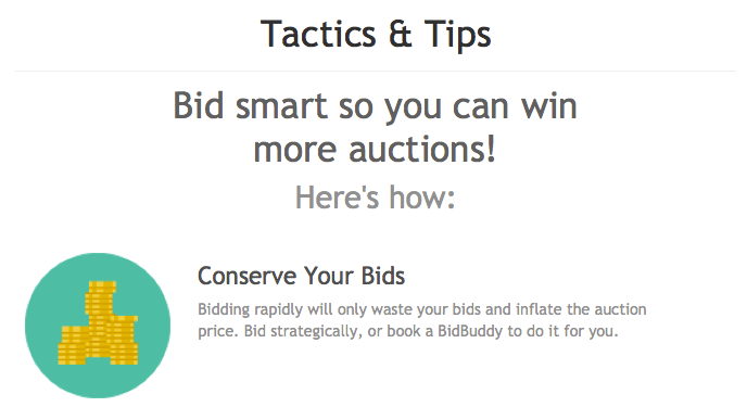 Best Bidding Site Offers Tips